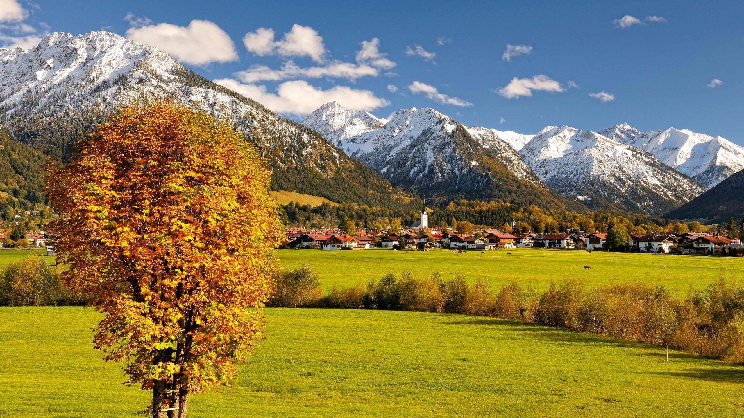 Fall Forest Wallpaper For Desktop Wallpaper Allgaeu Germany Europe Mountains Autumn