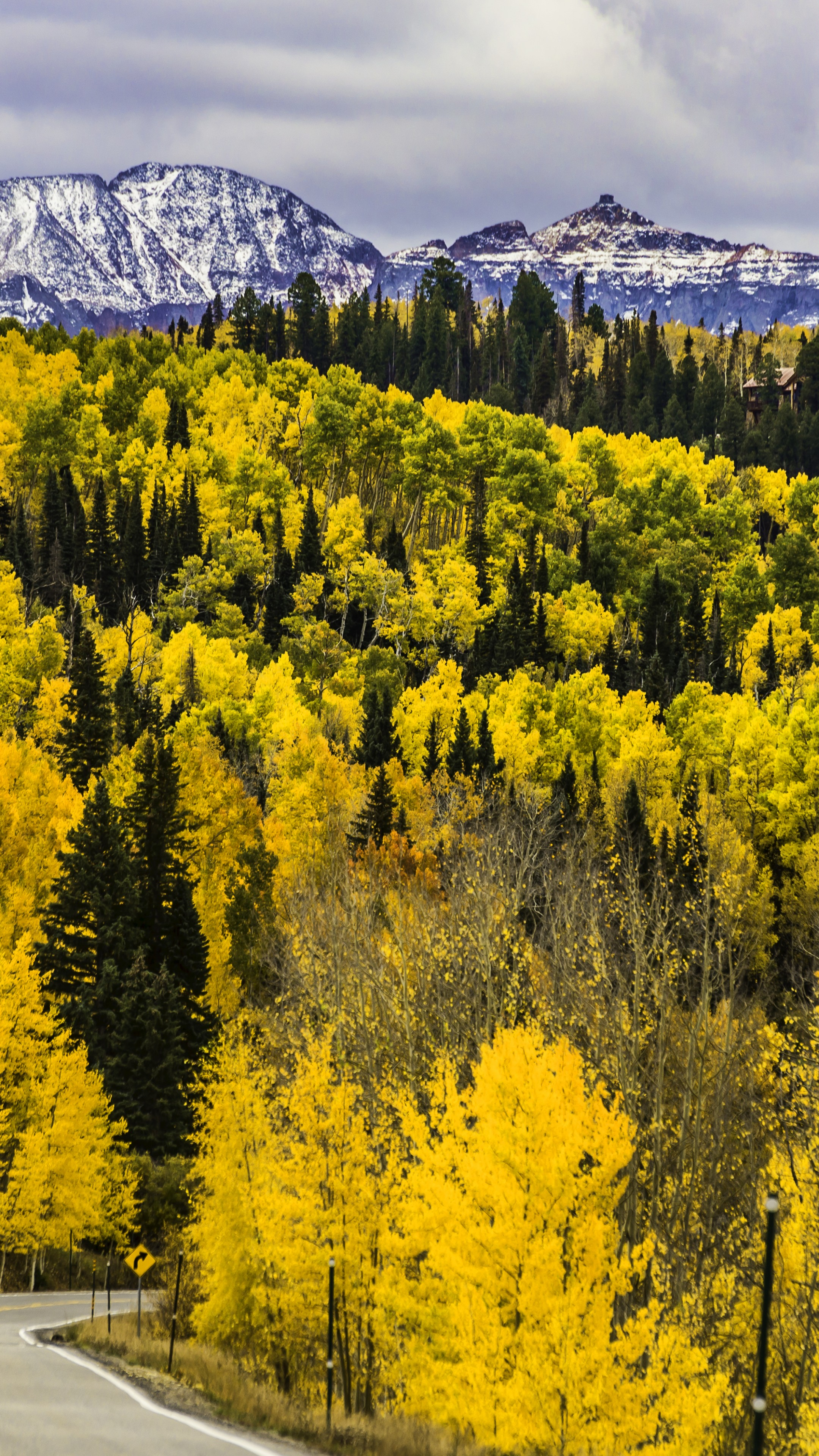 Wallpaper Autumn Forest Trees Mountains Road Colorado