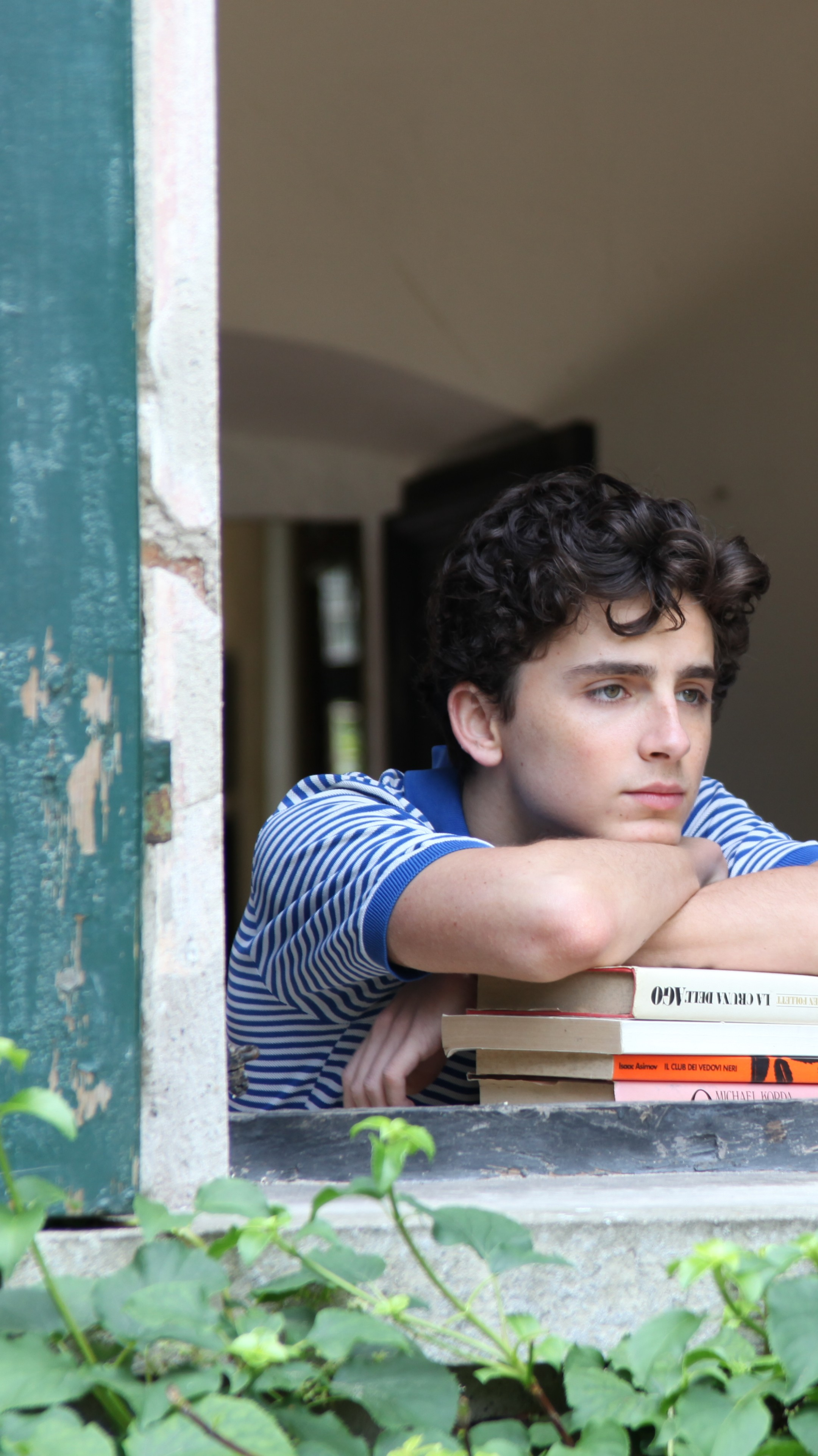 Cool Sun Quotes Wallpaper Wallpaper Call Me By Your Name Timothee Chalamet 5k