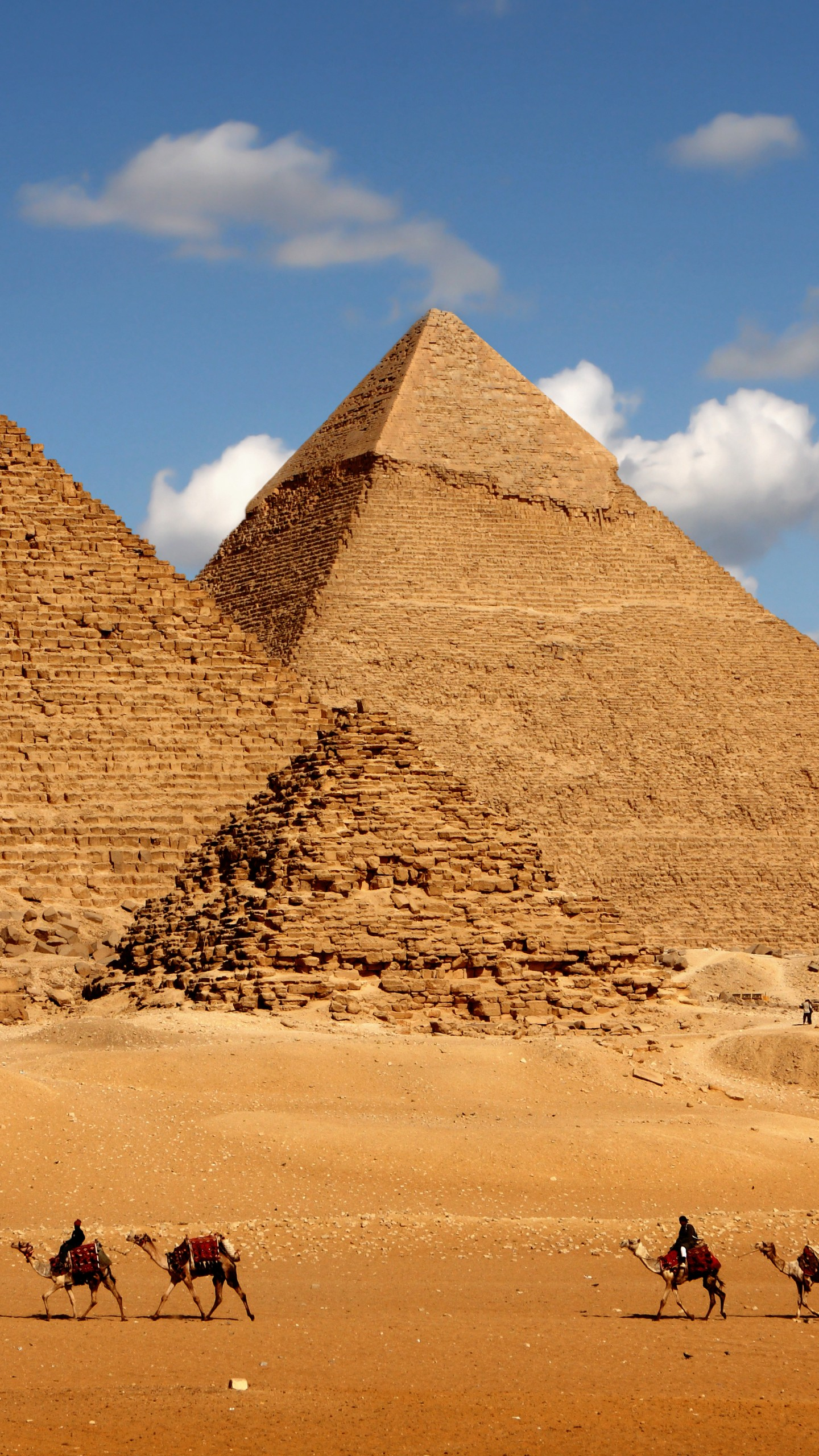 Photography Wallpaper Hd Quotes Wallpaper Egypt Pyramid Camel 8k Architecture 16472