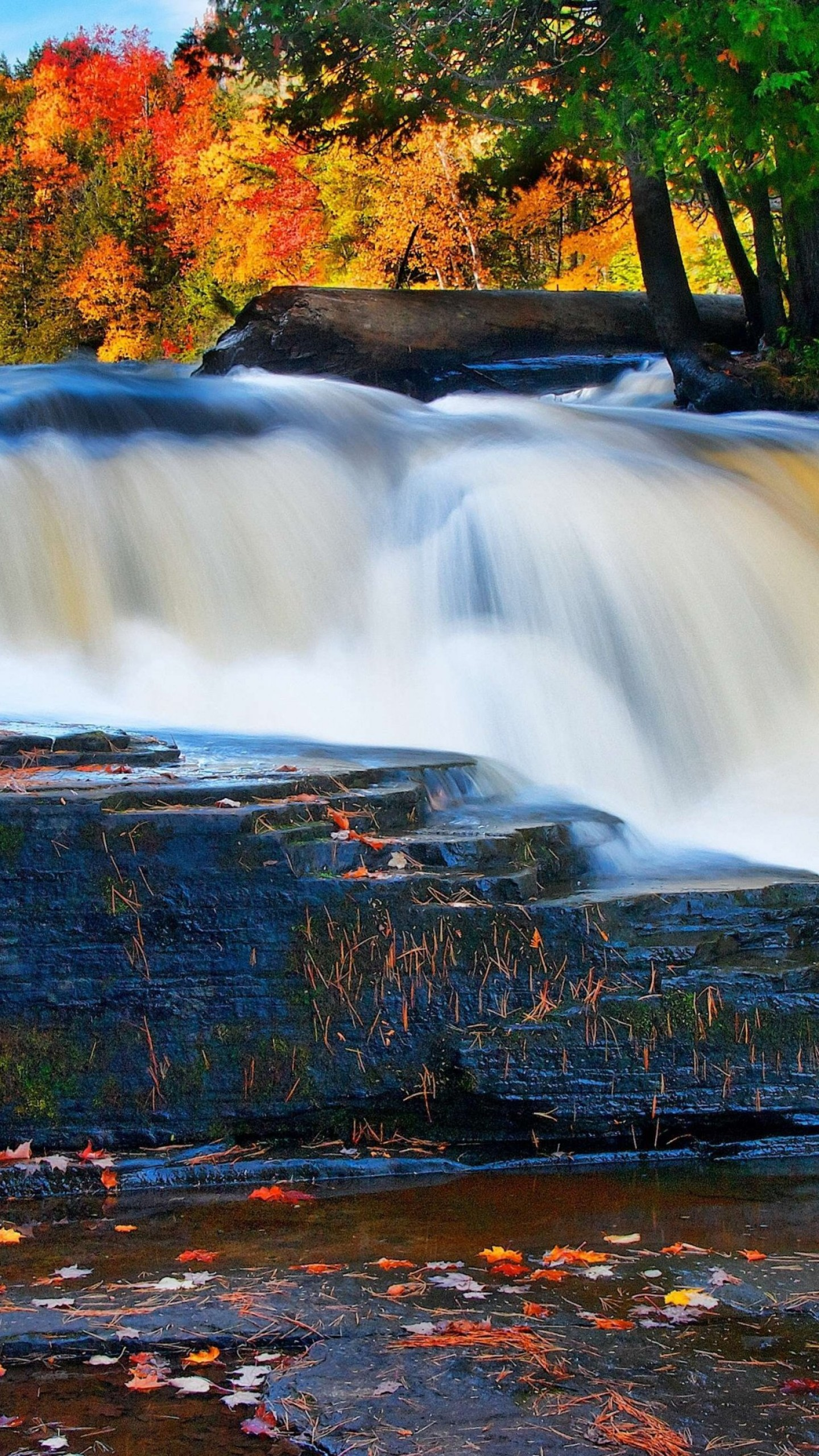 Fall Wallpaper Lake Wallpaper Forest 5k 4k Wallpaper River Waterfall