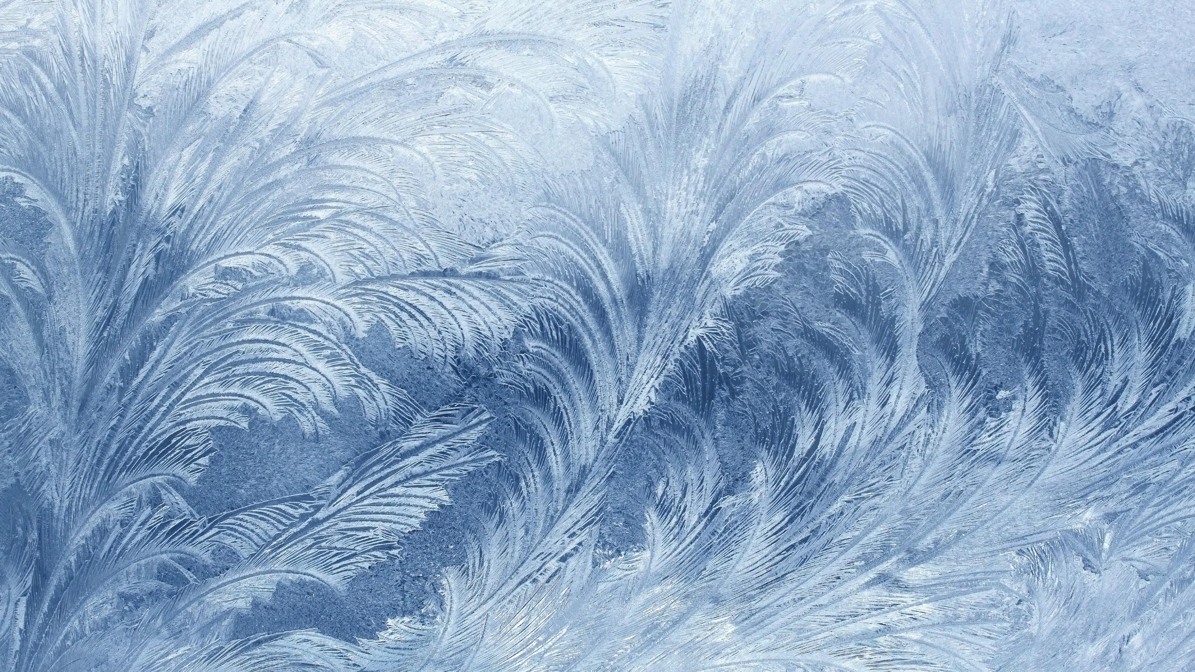 Frozen Quotes Wallpaper Wallpaper Frozen 4k 5k Wallpaper Pattern Glass Snow