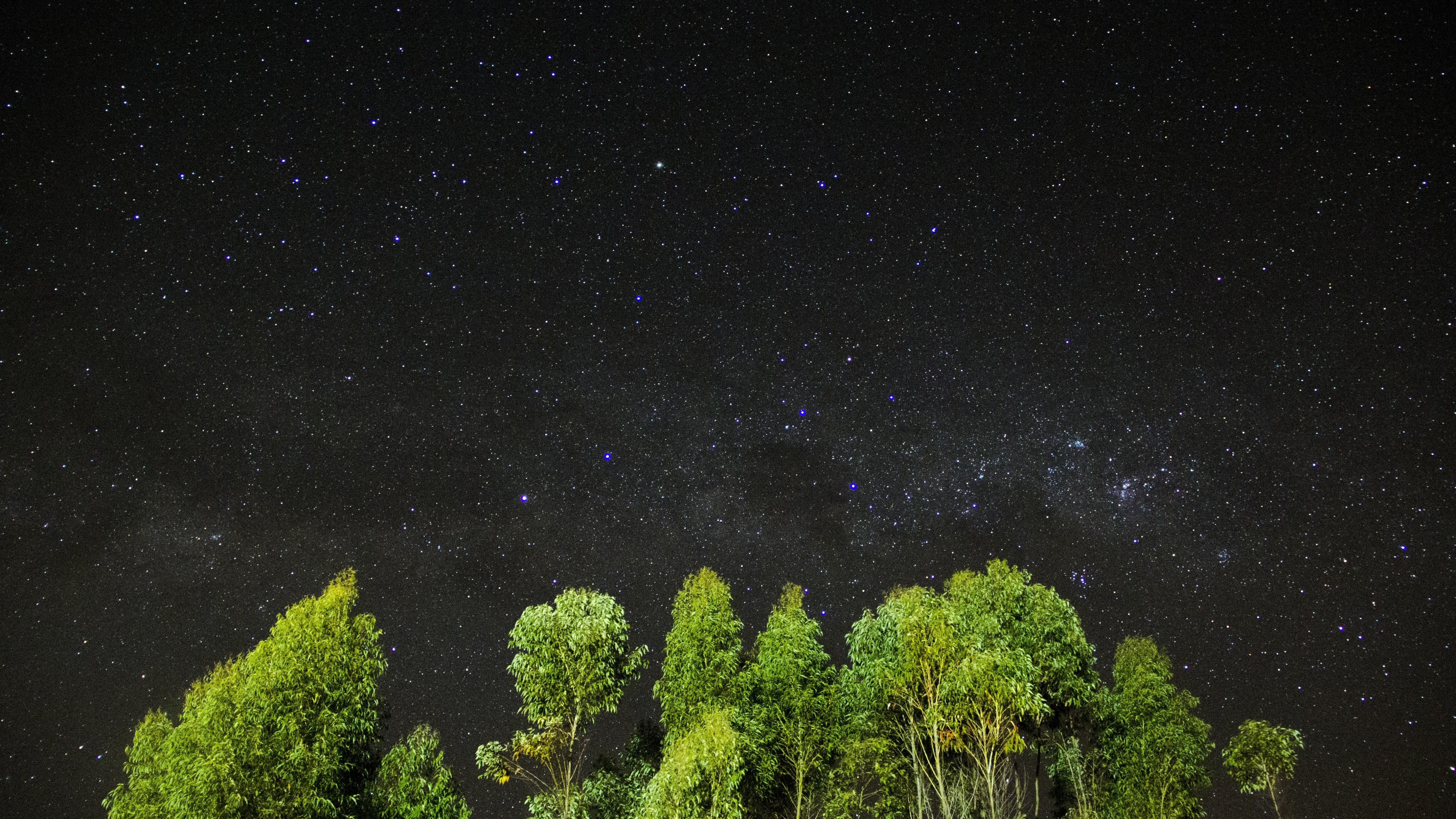 Windows 10 Wallpaper For Girls Wallpaper Night Stars Sky Trees 4k Nature 16014