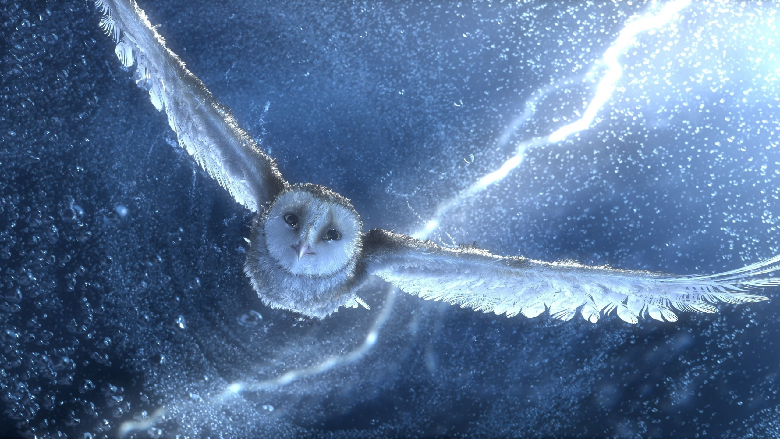 Funny Quotes And Wallpapers Wallpaper Owl Flying Snow Storm Lightning Blue Bird