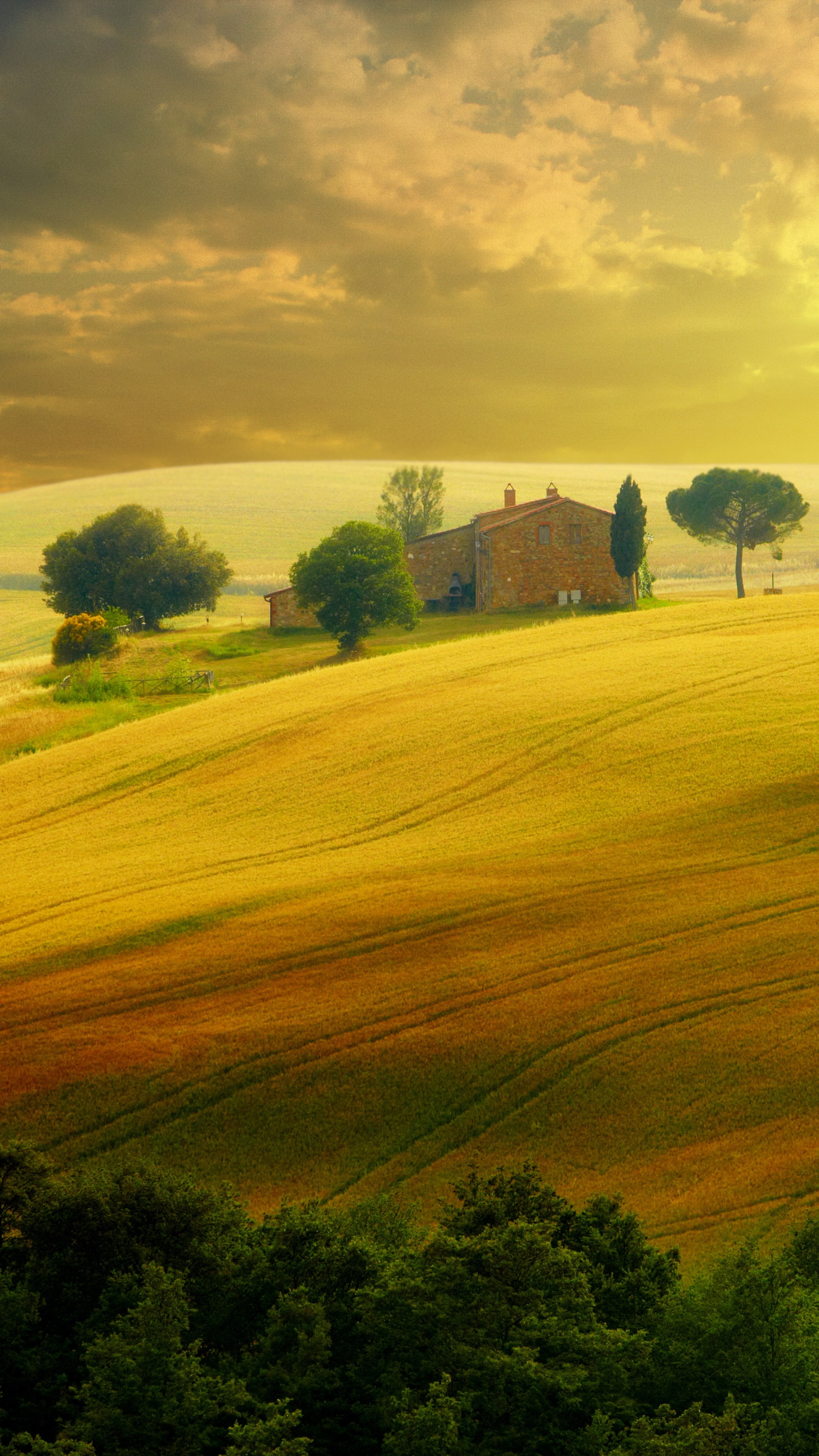Travel Wallpaper Quotes Wallpaper Tuscany Italy Hills Field 5k Nature 16281