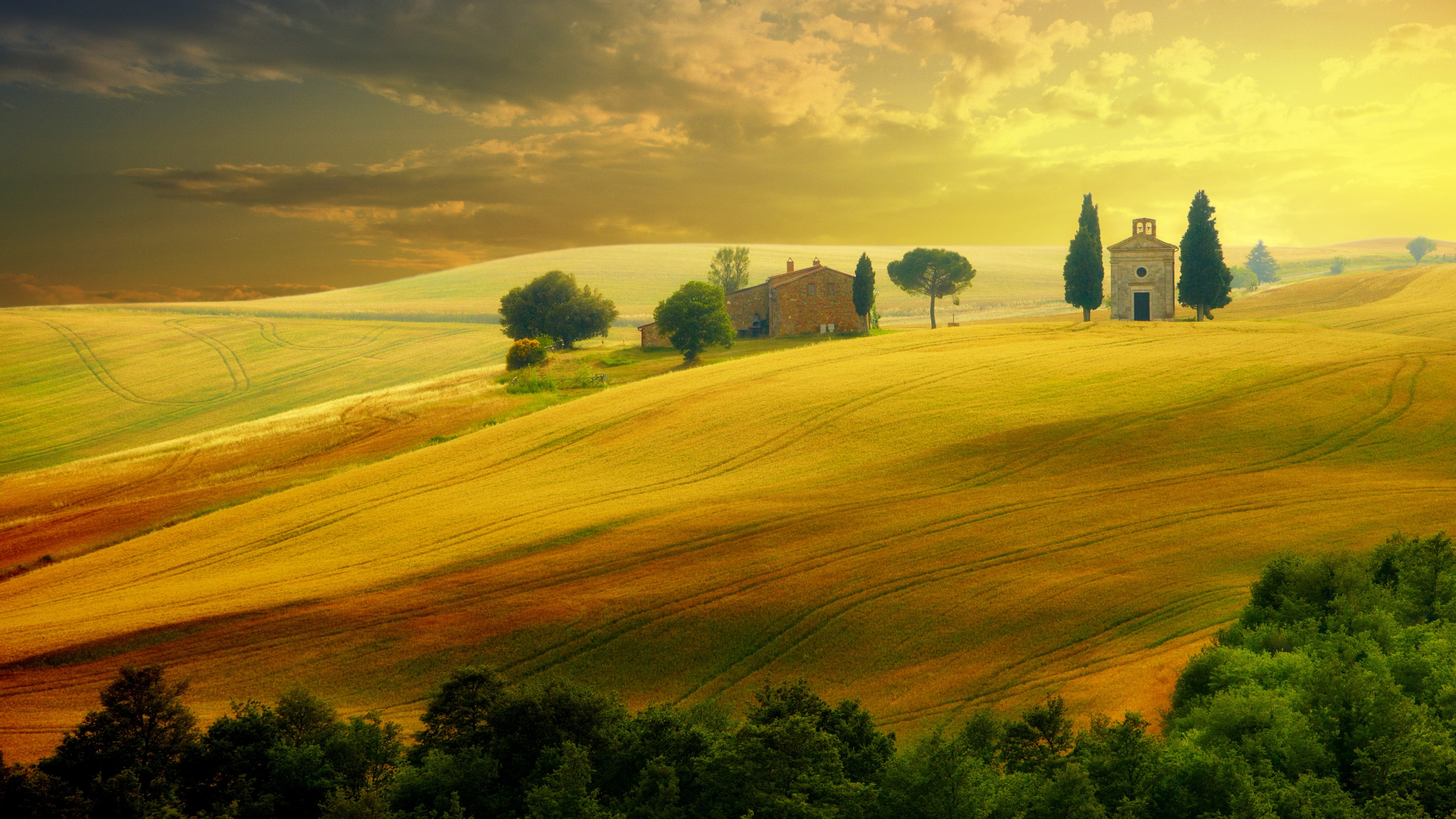 Flowers Hd Wallpapers With Quotes Wallpaper Tuscany Italy Hills Field 5k Nature 16281
