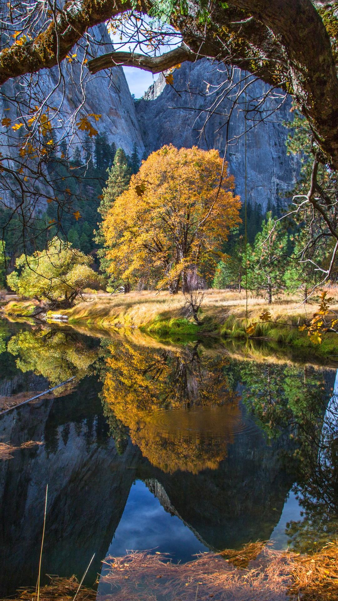California Girls Facebook Wallpaper Wallpaper Yosemite 5k 4k Wallpaper 8k Forest Osx