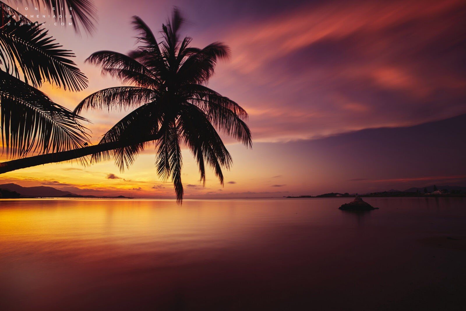 Canada Wallpaper Hd Iphone 50 Palm Trees Sunset Wallpapers Hd High Quality Download