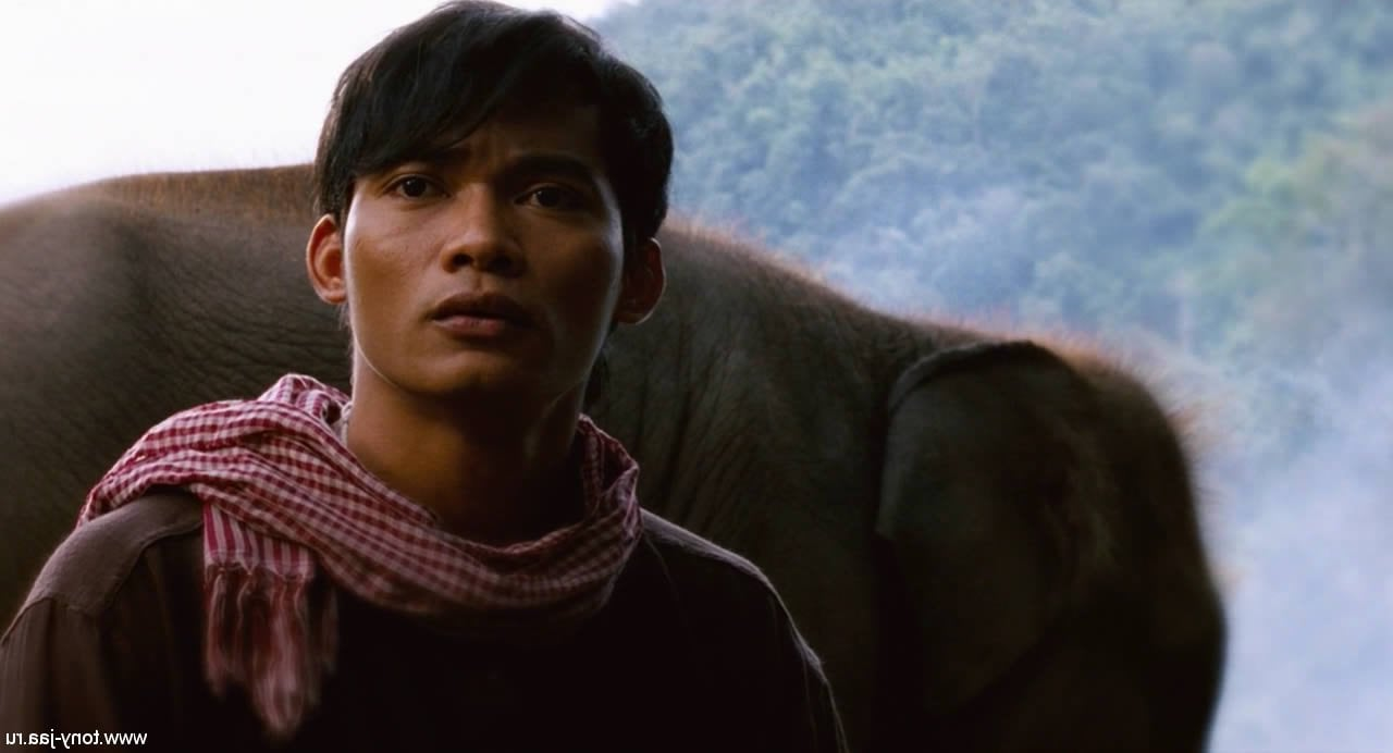 Hd Wallpapers For Iphone 7 17 Tony Jaa Wallpapers Hd Free Download