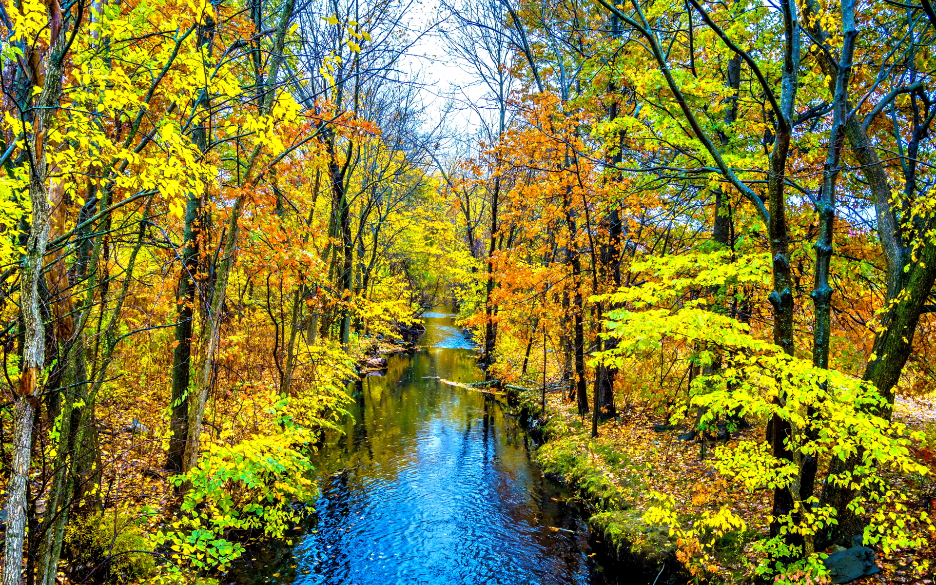 Fall Foliage Wallpaper 1920x1080 Bright Autumn Forest Amp Creek Wallpapers Bright Autumn