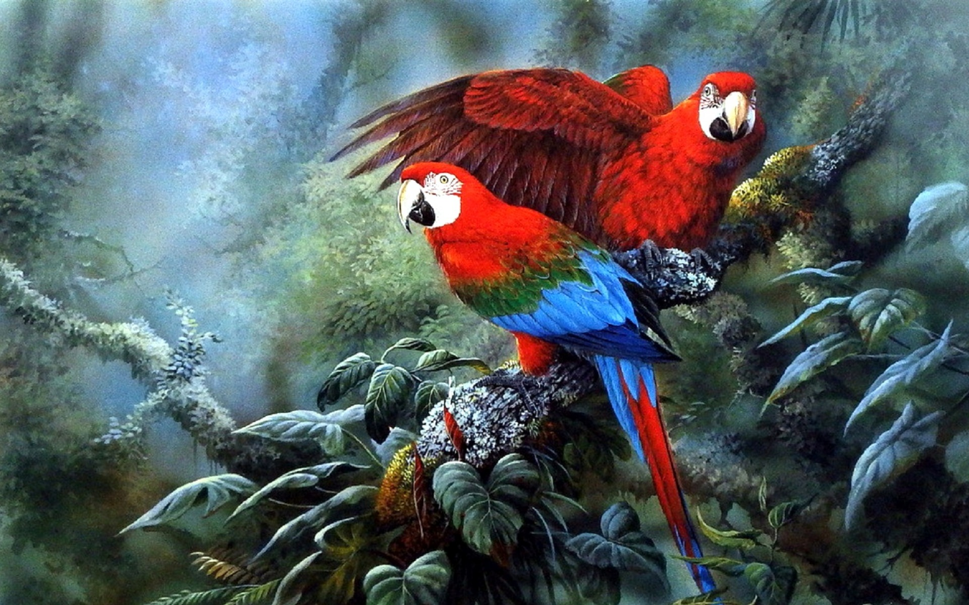 Cute Animated Hd Wallpapers Bright Macaws Couple Jungle Wallpapers Bright Macaws
