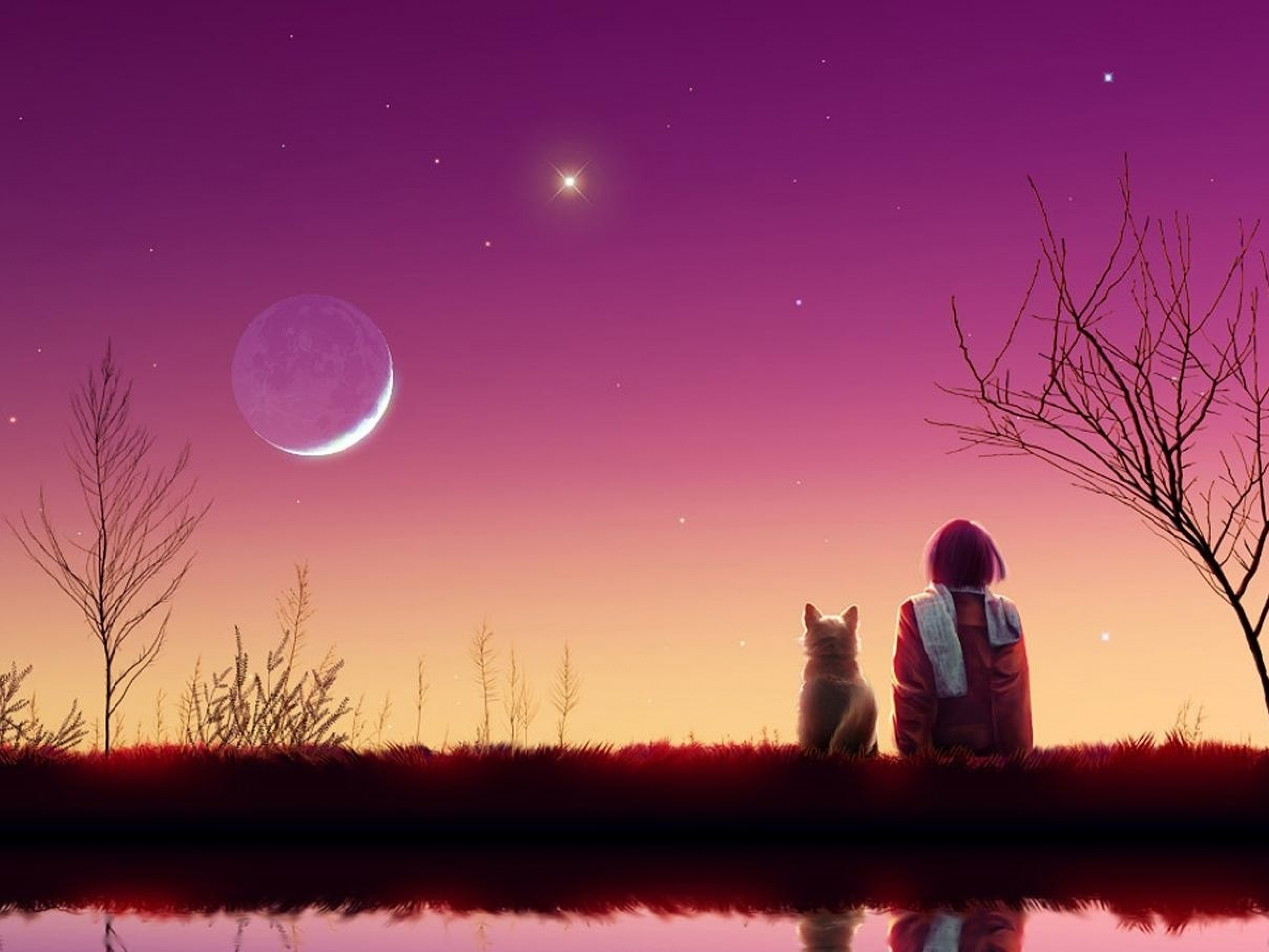 Animated Peacock Wallpapers Child Dog Pink Sky Lake Wallpapers Child Dog Pink Sky