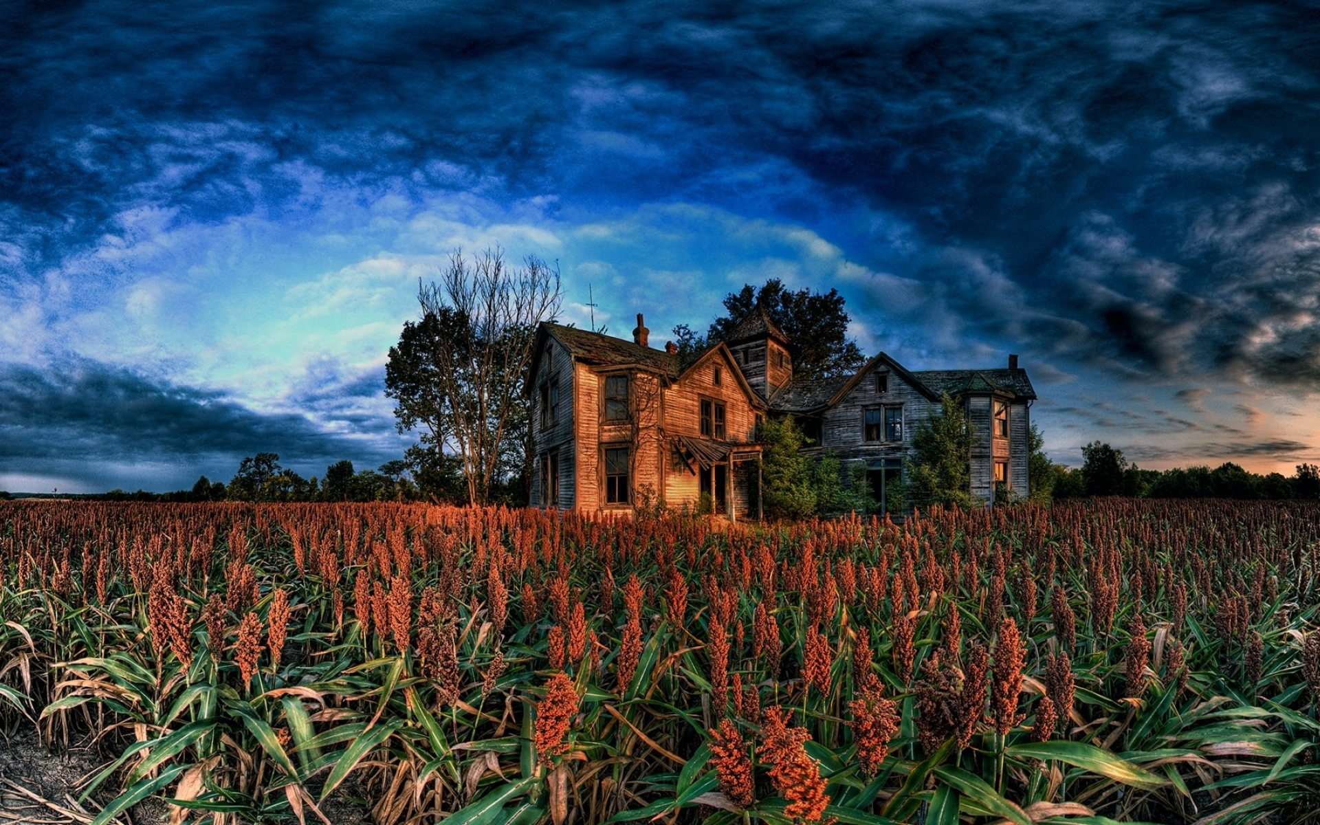 Fall Harvest Wallpaper Clouds Old House Amp Corn Field Wallpapers Clouds Old