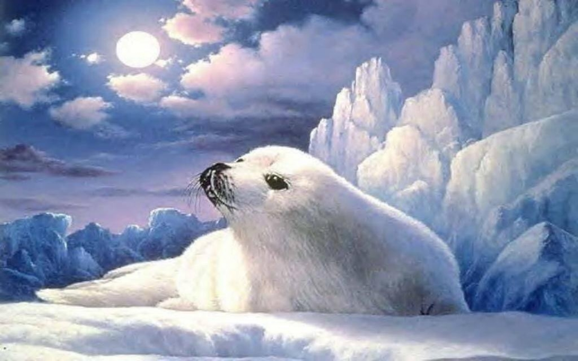 Animated Moon Wallpaper Cute Lonely Seal Ice Berg Moon Wallpapers Cute Lonely