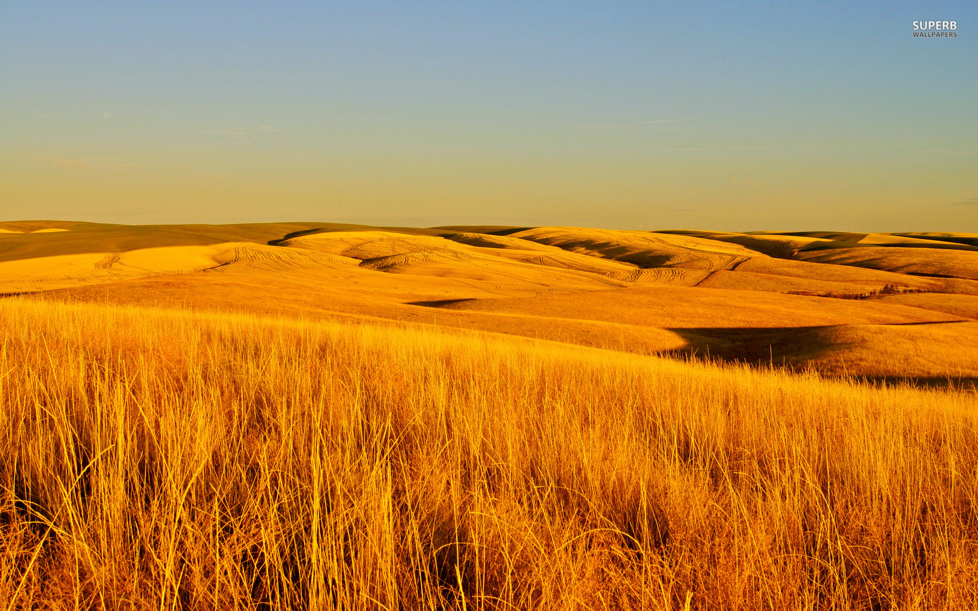 Fall Fields Wallpaper For Iphone Dry Grass Fields Wallpapers Dry Grass Fields Stock Photos