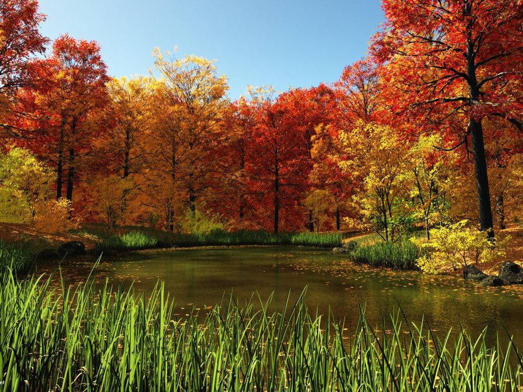 Fall Home Wallpaper 1024x768 Fall Pond Desktop Pc And Mac Wallpaper