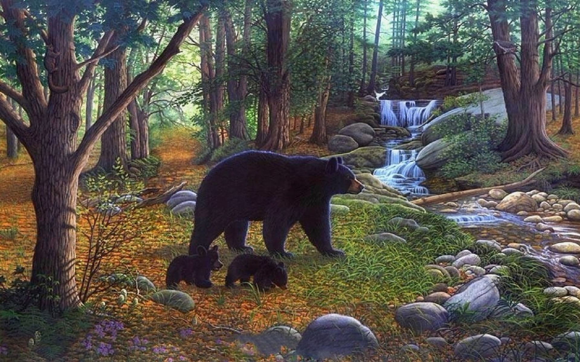 Free Wallpapers Of Cute Teddy Bears Forest Bears Waterfalls Creek Wallpapers Forest Bears