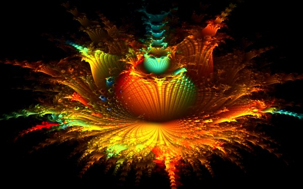 Fractal Floral Explosion Wallpapers