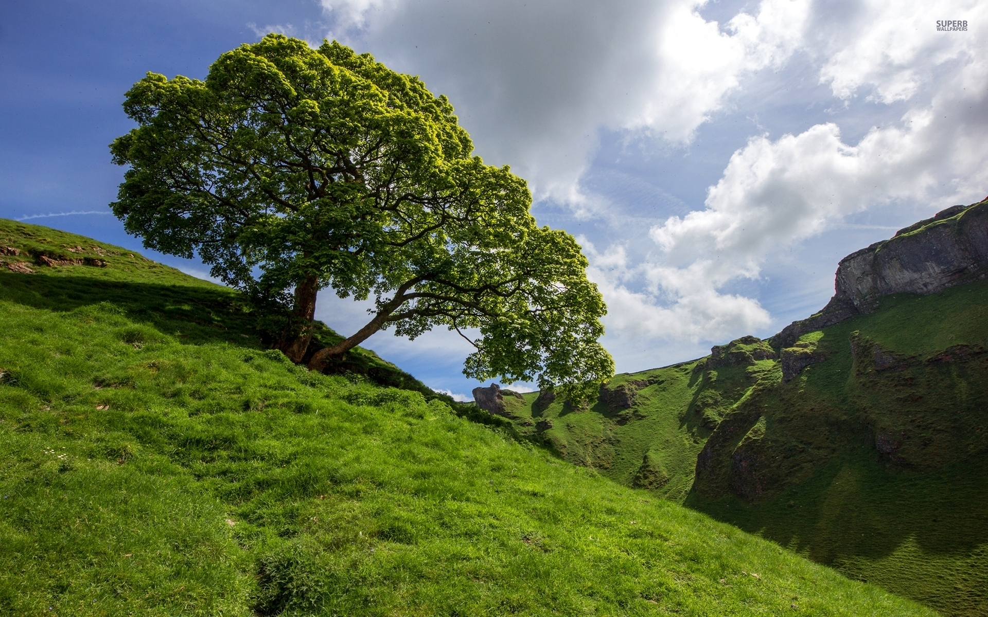Pretty Wallpapers For Girls Nice Tree Hills Amp Clouds Wallpapers Nice Tree Hills