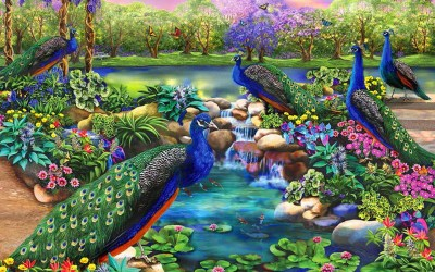 fantasy garden peacocks wallpapers peacock desktop painting birds pc scenery flowers hd super sports abstract majesty background reales diamond mac