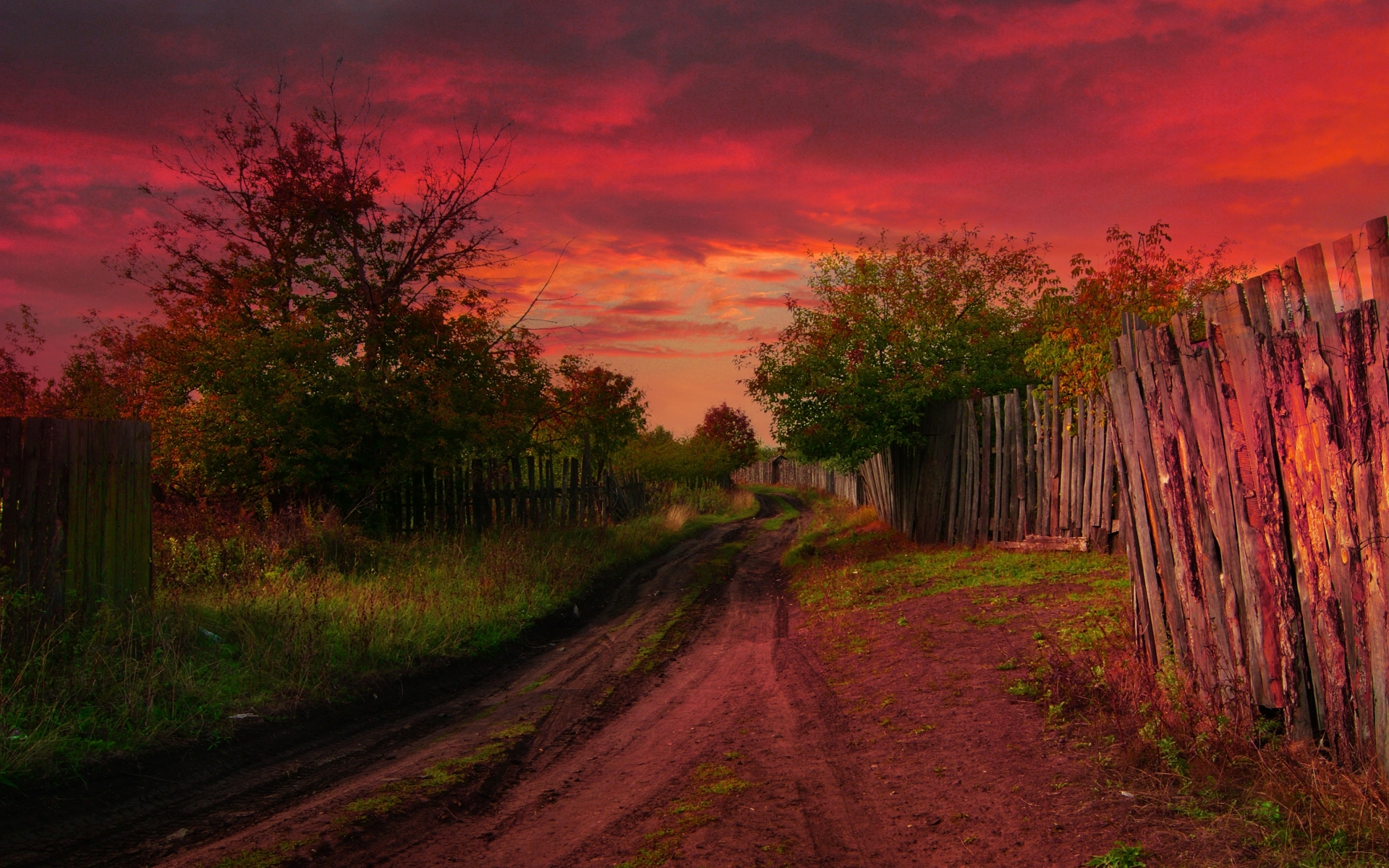Animated Snow Wallpaper Red Sky Dirty Road Trees Wallpapers Red Sky Dirty Road