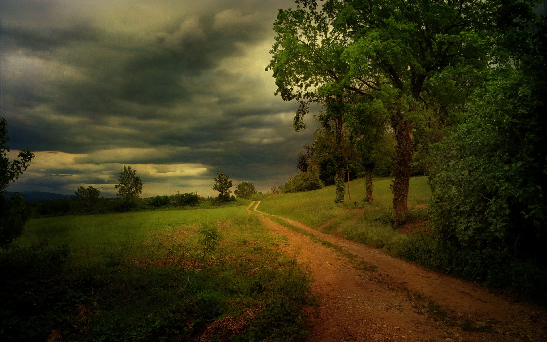 Girls Corn Wallpaper Storm Dirty Road Trees Plants Wallpapers Storm Dirty