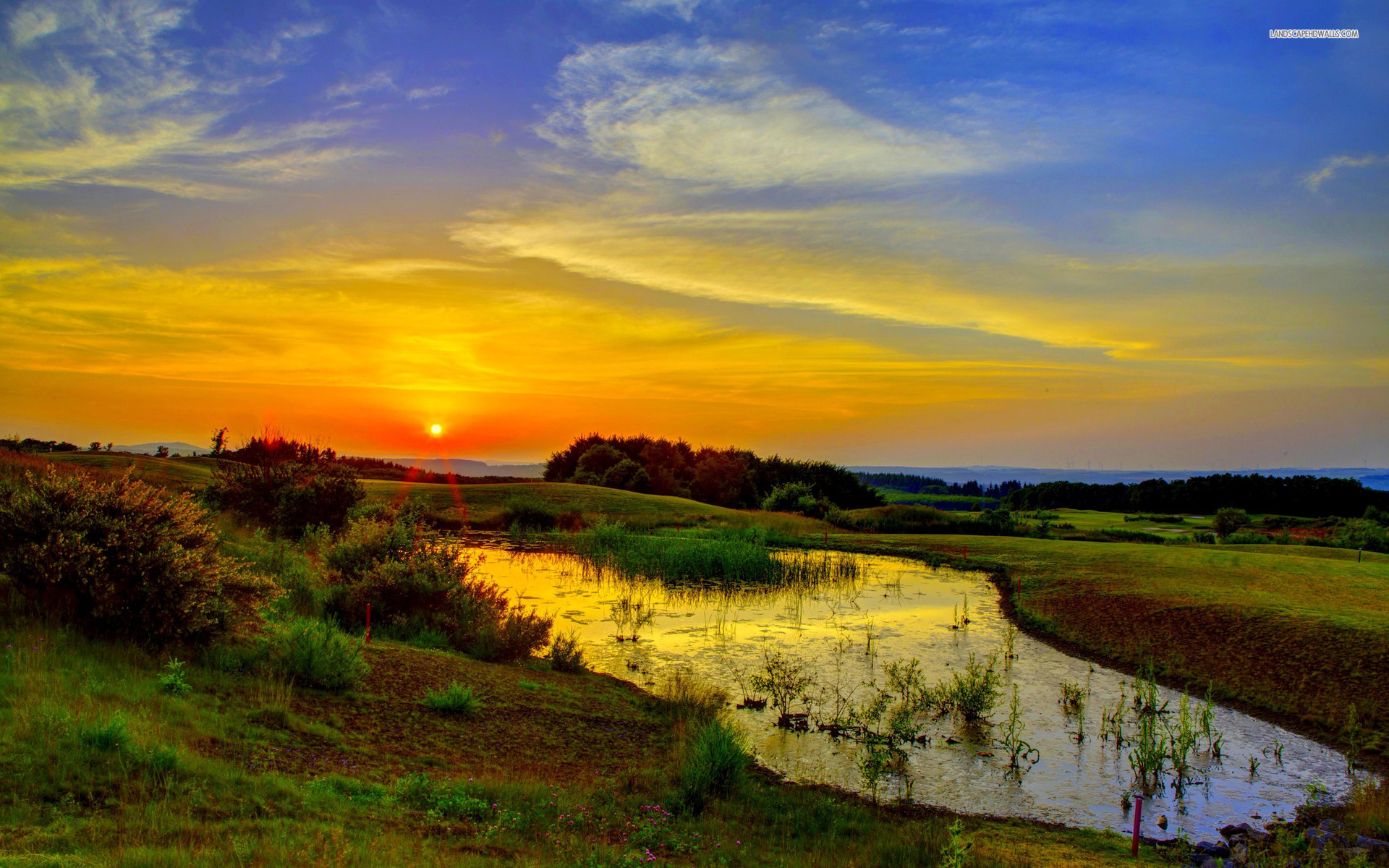 Girls Wallpaper For Facebook Profile Swamp Nature Golden Sunrise Wallpapers Swamp Nature