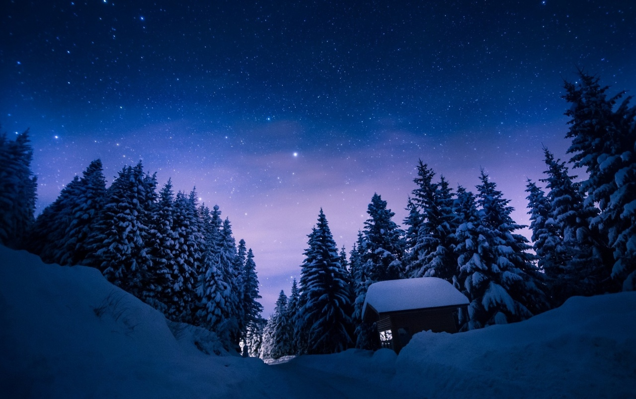 Stars Night Snow Forest House Wallpapers