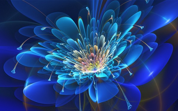 Abstract Fractal Flower Wallpapers