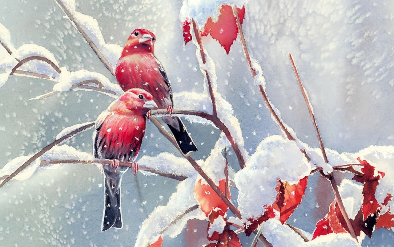 Water Falling Live Wallpaper Download Red Birds Snow Branches Leaves Wallpapers Red Birds Snow