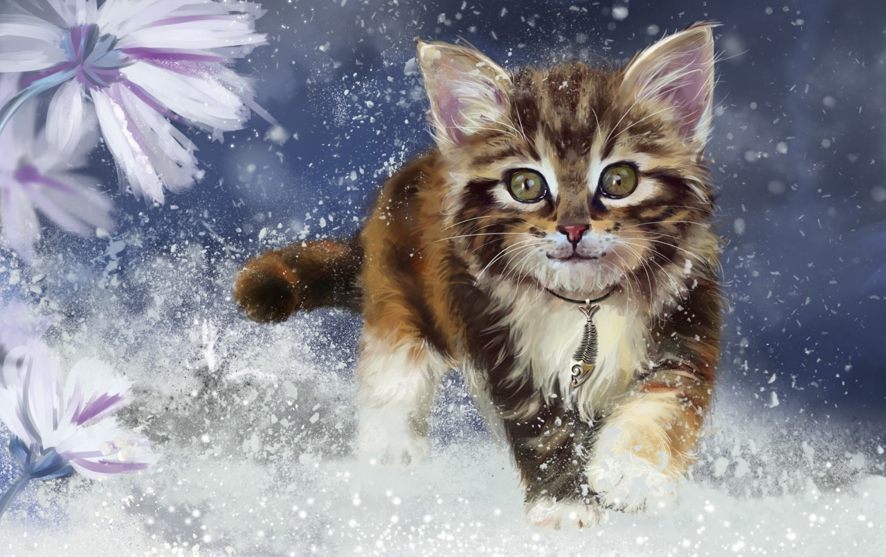 Cute Wallpapers Of Kittens And Puppies Sweet Kitty Cat Snowy Flowers Wallpapers Sweet Kitty Cat