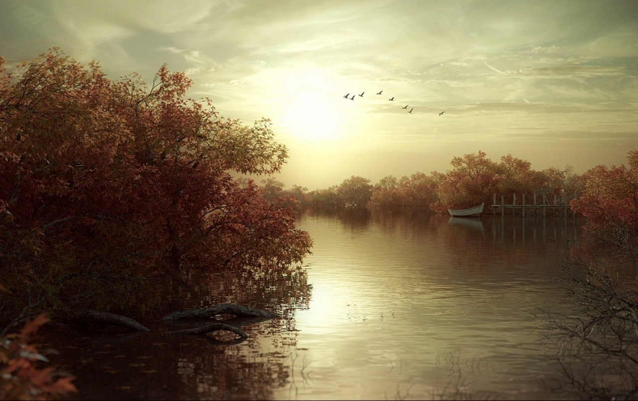 Fall Wallpapers For Tablet Autumn Trees Sea Bird Sky Boat Wallpapers Autumn Trees