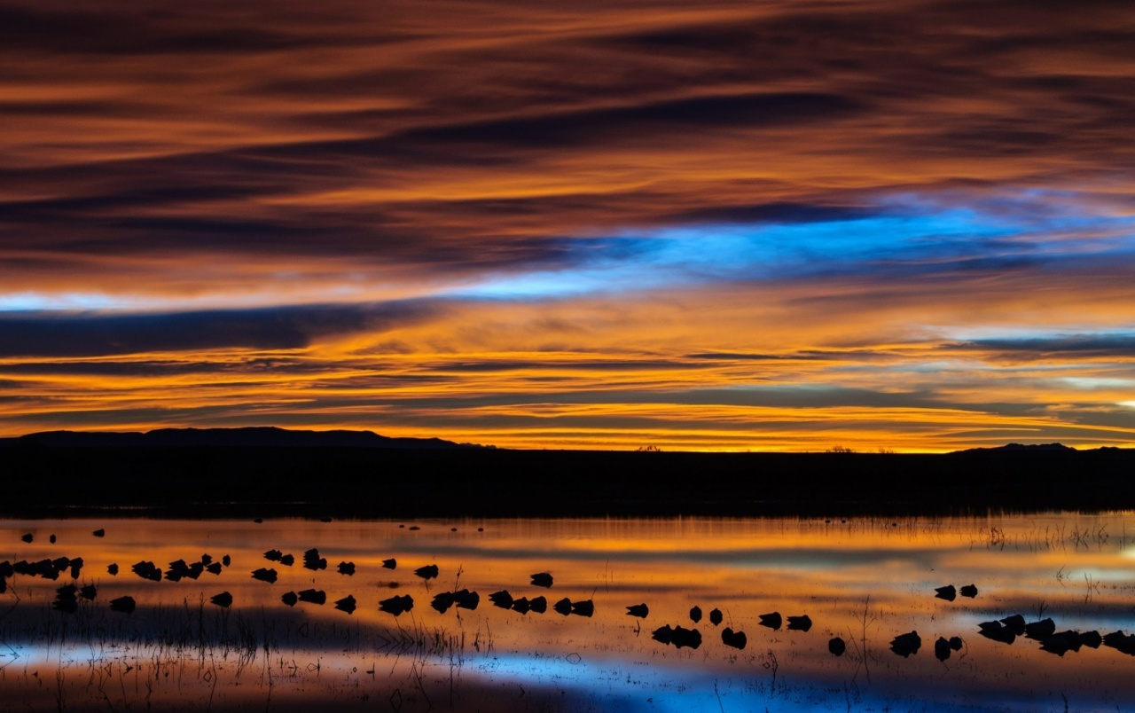 Fall Wallpaper Ipad Mini New Mexico Sunset Reflection Wallpapers New Mexico