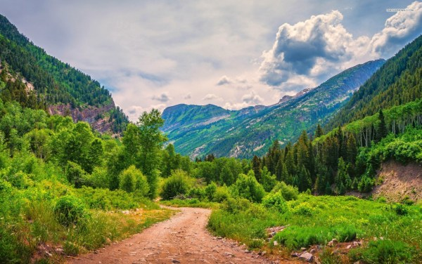 Amazing Mountains Trees Road Wallpapers Stock