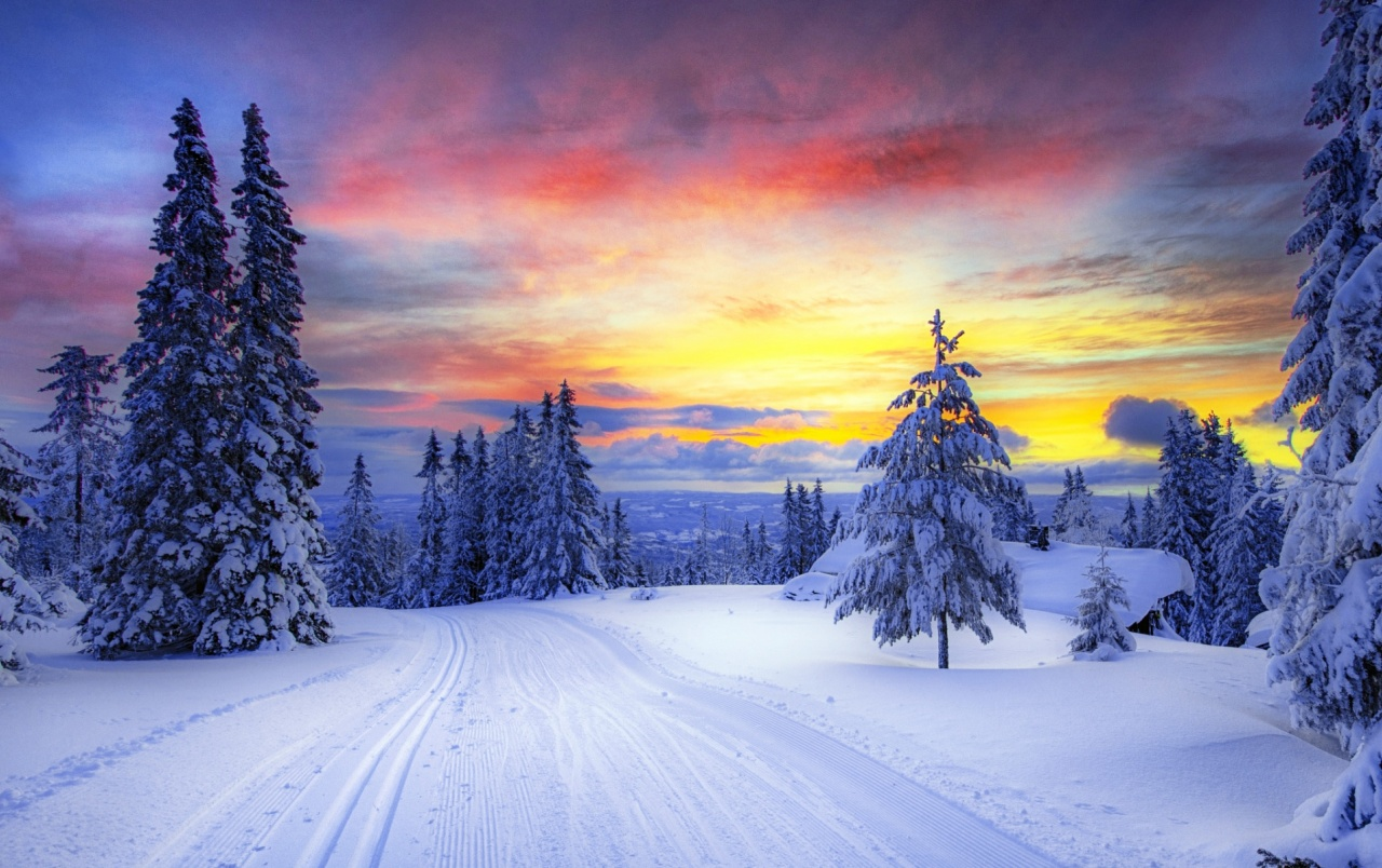 Winter Trees Snowy Road Sunset wallpapers  Winter Trees Snowy Road Sunset stock photos