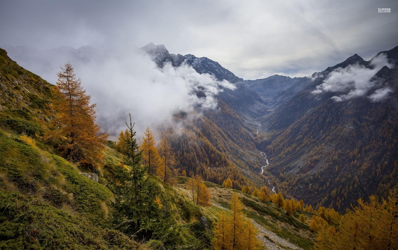 Fall Scenes For Computer Wallpaper Mountains Autumn Foggy Valley Wallpapers Mountains