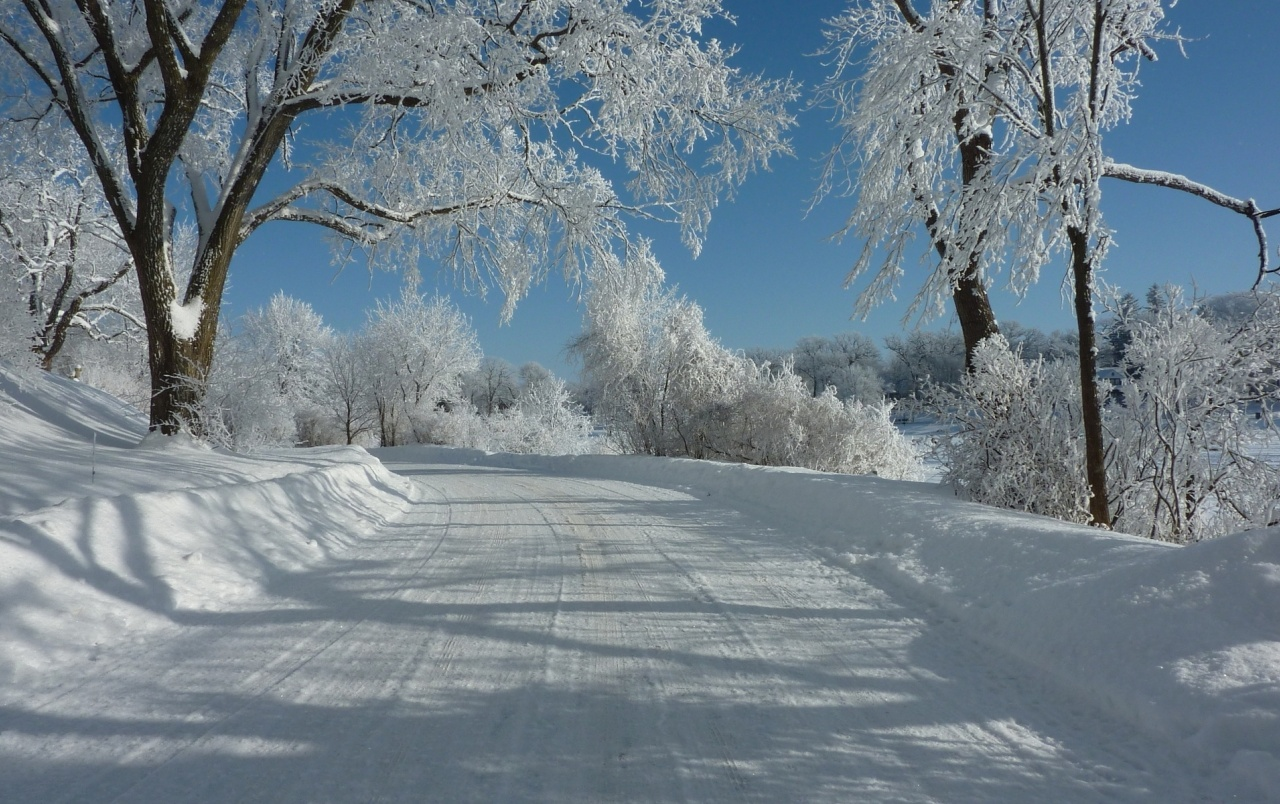 Slippery Snow Road White Trees Wallpapers Slippery Snow