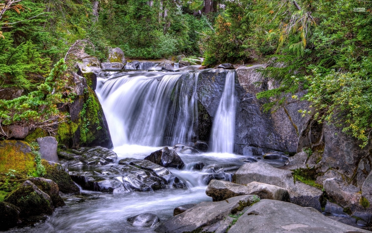 3d Hd Wallpapers For Laptop 1366x768 Waterfall Forest Cliff Plants Wallpapers Waterfall