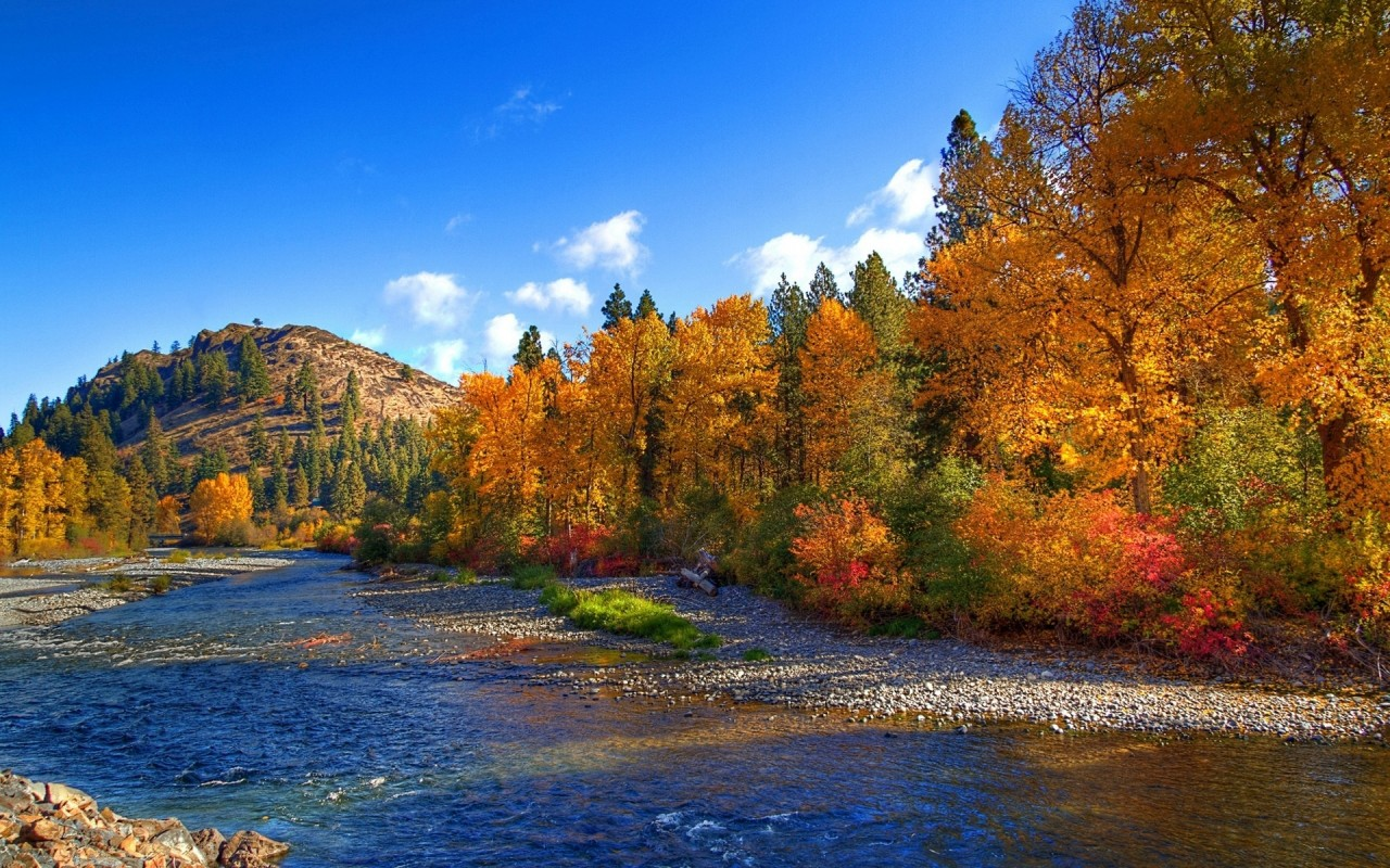 Early Fall Hd Wallpaper Peak Autumn Trees Lovely River Wallpapers Peak Autumn