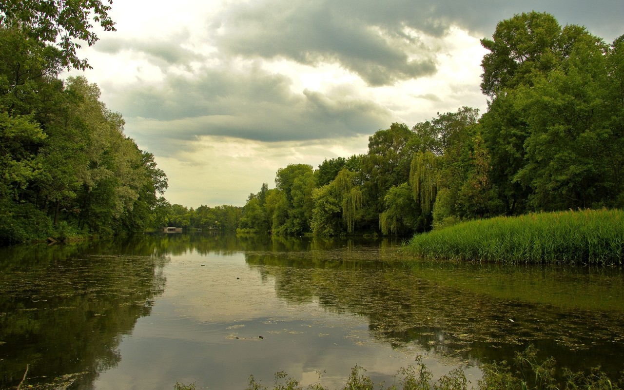 Virtual Reality Hd Wallpaper Calm River Trees Plants Clouds Wallpapers Calm River