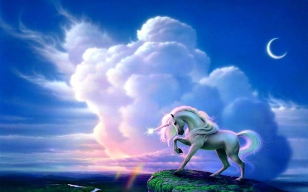 Unicorns Moment Wallpapers Stock