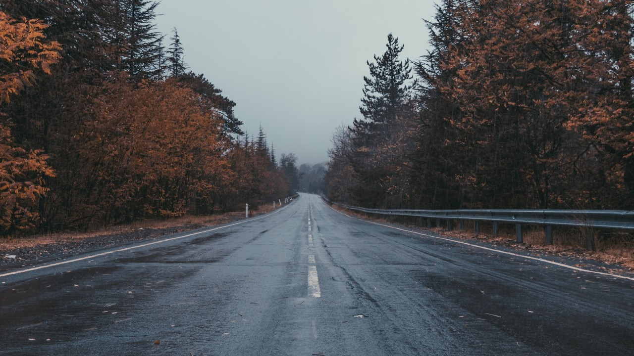 Road Marking Trees Overcast Wallpapers Road Marking
