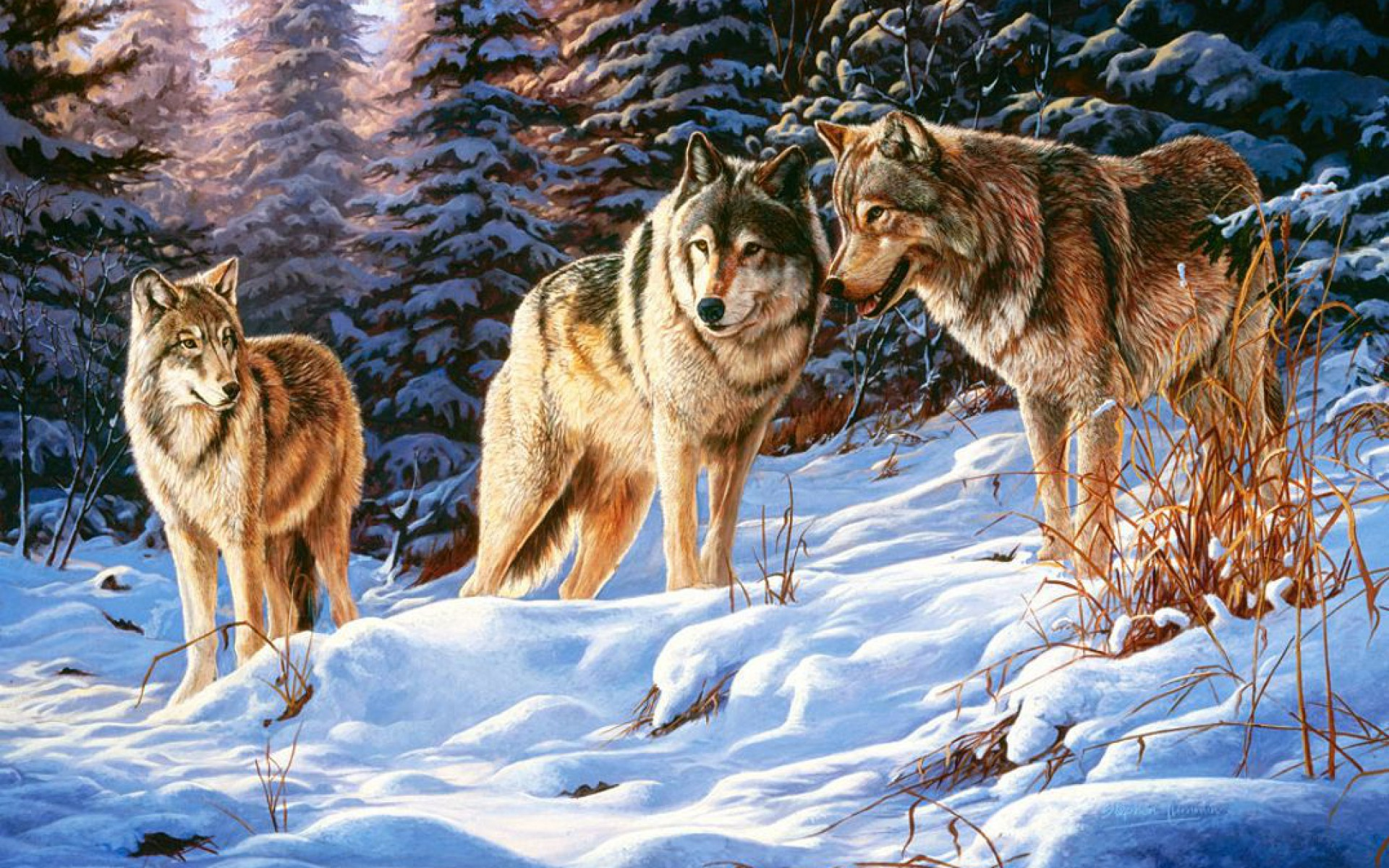 Animated Fish Wallpaper Mobile Winter Wood Wolves Small Talk Wallpapers Winter Wood