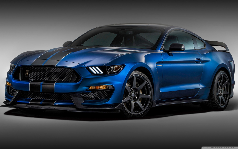 Mustang Shelby Girl Wallpaper 2016 Ford Mustang Shelby Gt350 4k Hd Desktop Wallpaper For