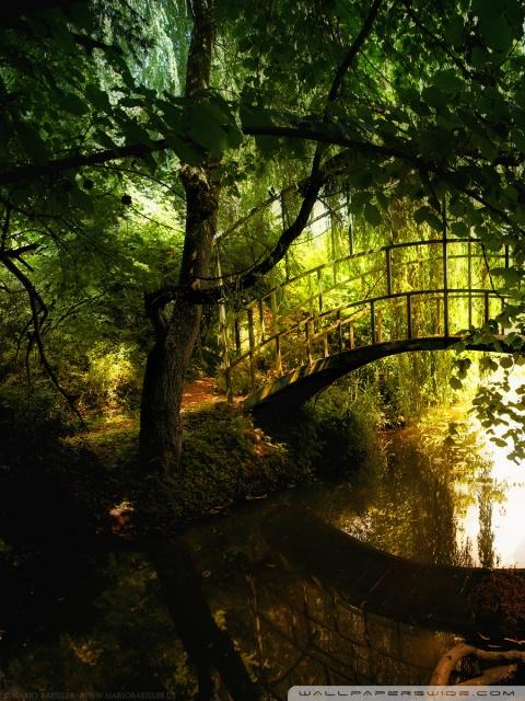 Free Fall Desktop Wallpaper Downloads Arched Bridge Reflections 4k Hd Desktop Wallpaper For 4k