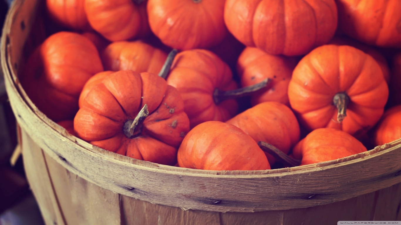 Cozy Fall Hd Wallpaper Basket Full Of Pumpkins 4k Hd Desktop Wallpaper For 4k