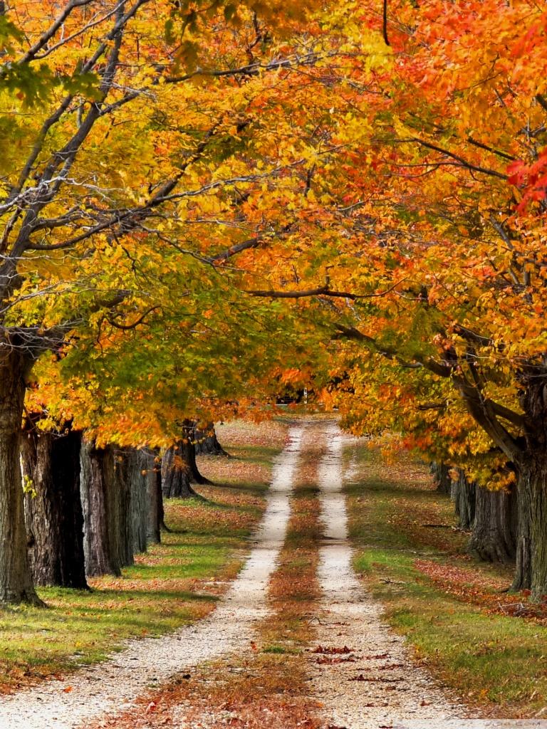 Dual Monitor Fall Wallpaper Beautiful Country Road 4k Hd Desktop Wallpaper For 4k