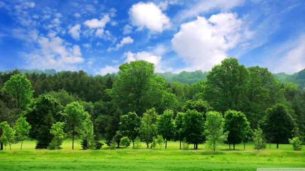 25 Beautiful Summer Landscape Desktop Wallpaper Free Pictures And
