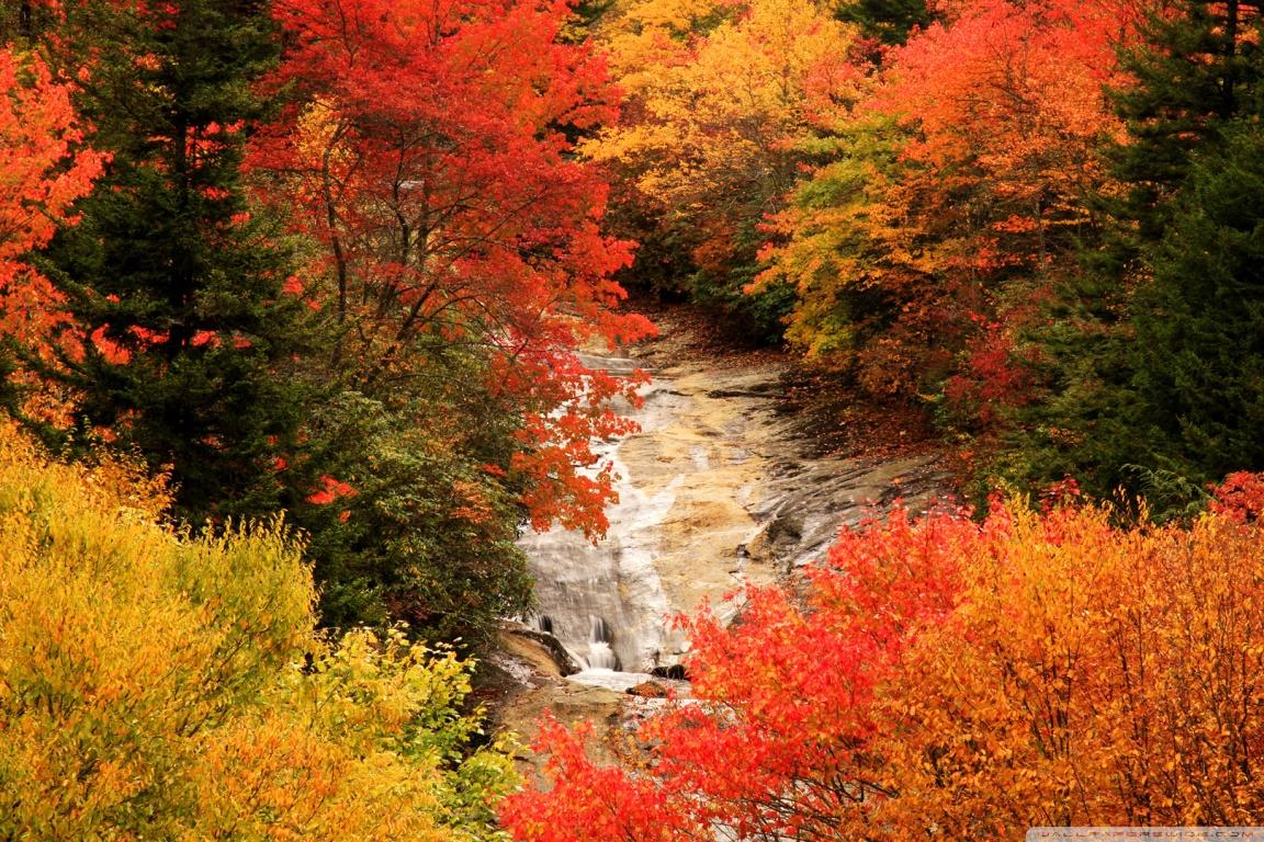 Fall Waterfall Wallpaper Hd Blue Ridge Parkway North Carolina Autumn 4k Hd Desktop