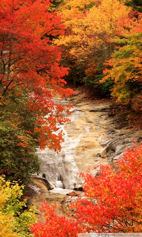 Fall Desktop Wallpaper Widescreen Blue Ridge Parkway North Carolina Autumn 4k Hd Desktop
